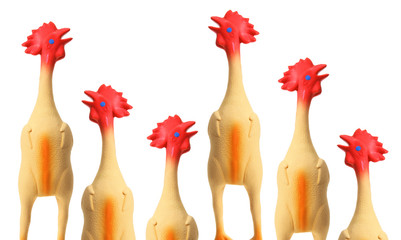 Toy Rubber Chickens