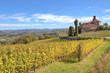 Vineyards and old castle. Piedmont, Italy.