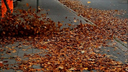 street cleaning with leaf sucker