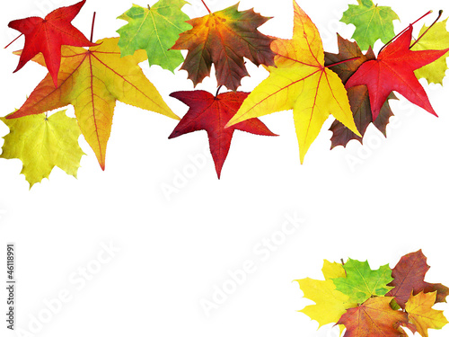 canvas print picture Herbstbanner bunt
