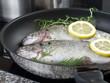 Fish on frying pan