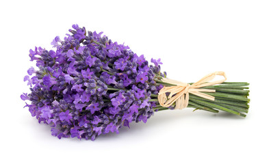 tied bunch of lavender