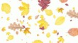 Leaves falling down on white background