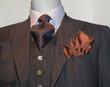 Dark Brown Striped Jacket, Patterned Tie and Tan Handkerchief (H