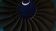 Jet engine closeup view of fan