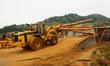 Logging Forklift Loading