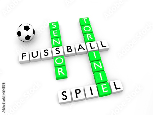 Fussball_Torliniensensor - 3D