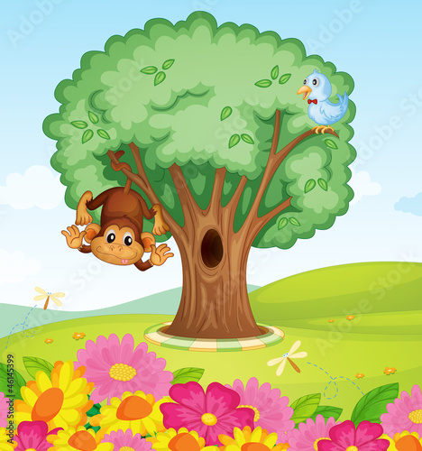 a monkey, a bird and a tree