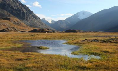 Siberian Alpine Tundra