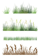 grass strips collection isolated on white