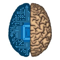 Artificial intelligence, CPU inside human brain.