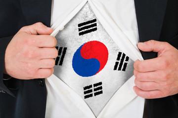The South Korea flag