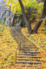 Stairway with colorful autumn leaves