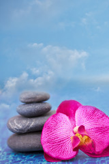 blue sky, balanced stones and orchid