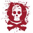 Paint art skull