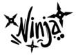 Ninja sign art