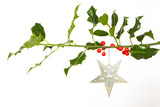 Fototapety Very old silver star hanging from a twig (butchers broom)