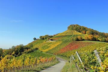 Herbststimmung: Weinberge im Handthal (Franken, Bayern)
