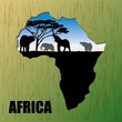 Background of Africa - vector illustration