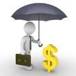 Businessman with umbrella protecting dollar