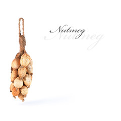 Dried nutmeg tied up and hanging, isolated with copy space.