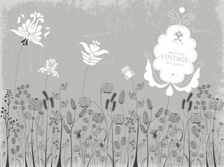 Traditional flowers and herbs background