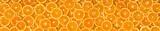 Pomarańcze-panorama - 46200572