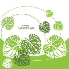 Green  leaves background, vector illustration
