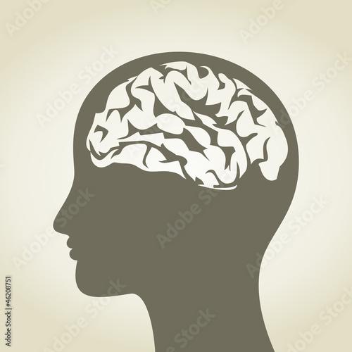 Brain5