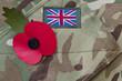 Poppy on a british army uniform