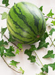 Whole watermelon with green leaves