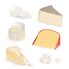 Vector Cheese Set