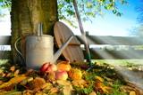 Fototapety Herbstmorgen