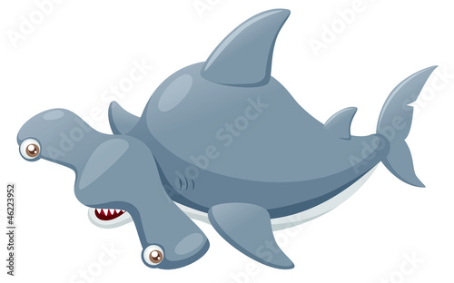 illustration of Hammerhead shark