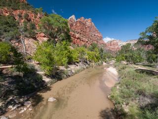 Rivière Virgin river dans le parc national du Zion