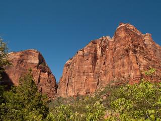 Falaise de grès rouge dans le parc national du Zion