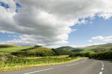 Road into Cheviot Hills