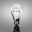 Gold fish inside an electric bulb