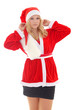 woman wearing santa claus costume