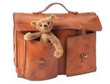 Briefcase and Teddy Bear