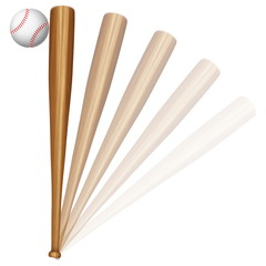 baseball ball and bat