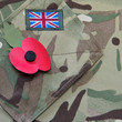 Poppy appeal remembrance day