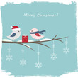 Winter card with cute birds and gift box
