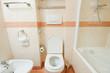 Toilet in the modern bathroom