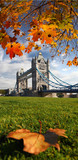 Tower Bridge with autumn leaves in London, UK