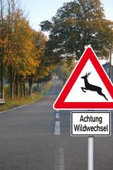 Straße mit Schild Wildwechsel