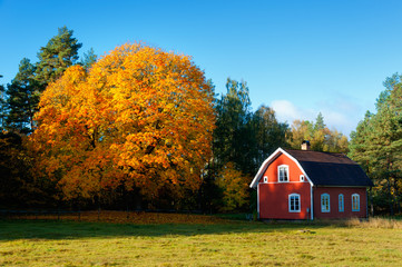 Herbst in Schweden