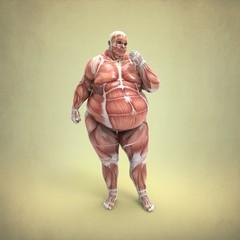 Anatomia Obeso