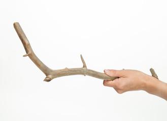 Hand holding a snag