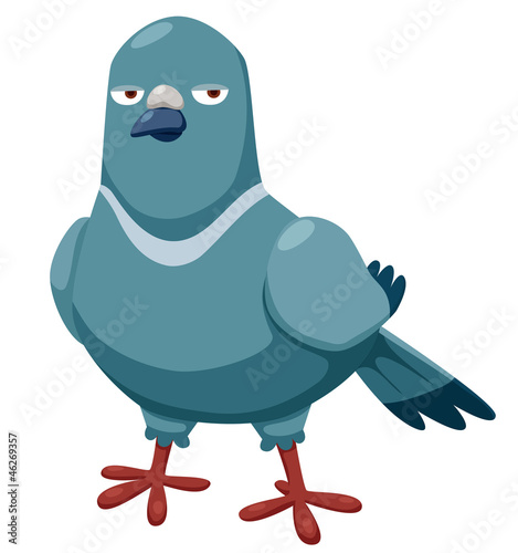illustration of cartoon pigeon